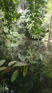 Onze wandeling door de jungle richting Emerald Bay